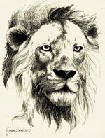 Free Lion Print